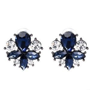 Blue & Clear Crystal Stud Earrings